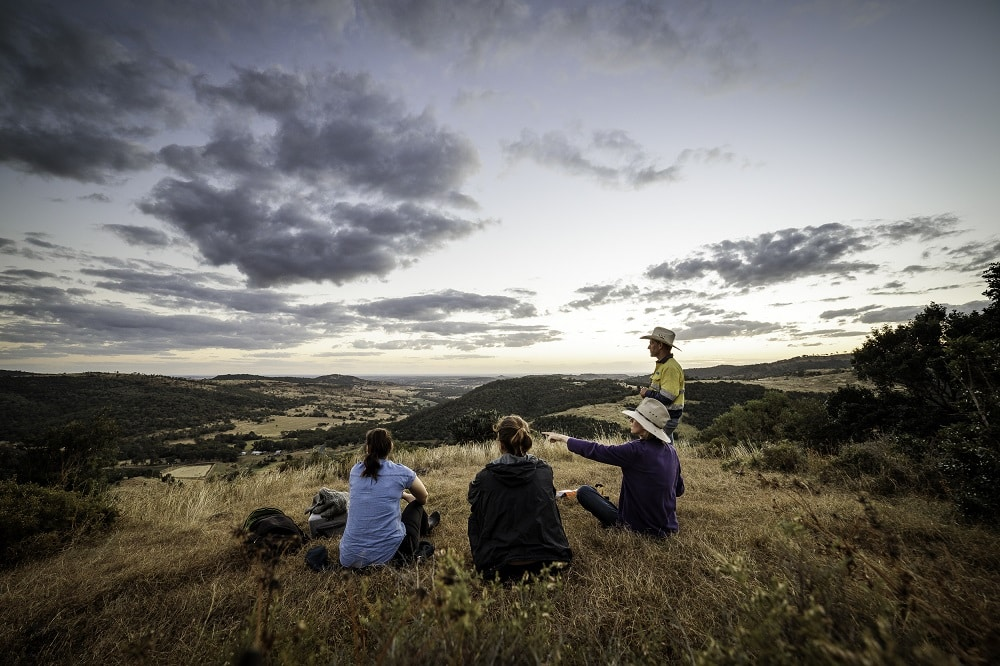 Western Downs storytelling project | Storyselling: why stories drive sales | Image by Alex Coppo