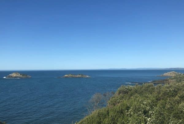 Scenery in Devonport - Media Mortar | 7 key takeaways from the Australian Regional Tourism (ART) Convention