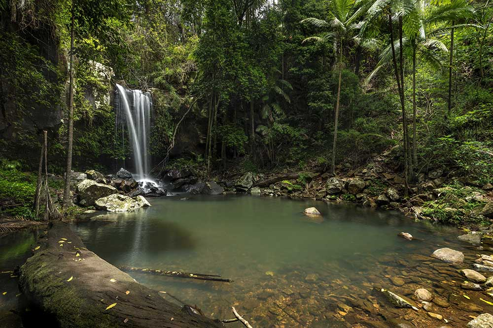 Content marketing agency_Business New Year's Resolutions_Get organised_Mt Tamborine waterfall