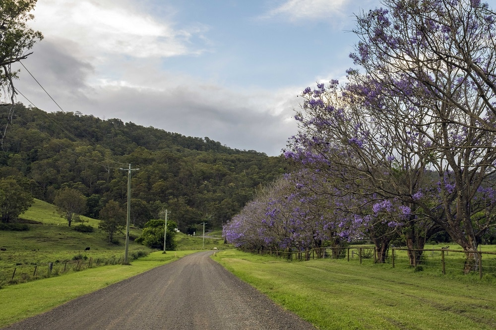 Tourism marketing trends_country road